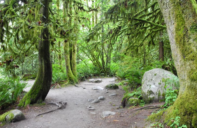 Your Guide to Vancouver's Best Short Hikes