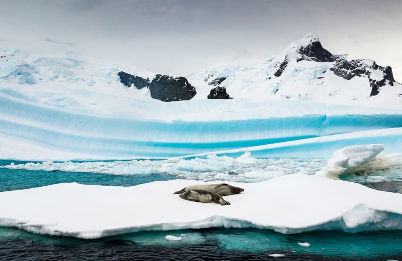 19 Incredible Photos Proving Antarctica Is Unlike Anywhere Else on Earth