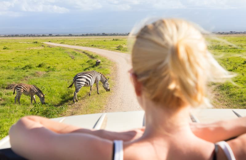 The 8 Best Safaris for Every Budget
