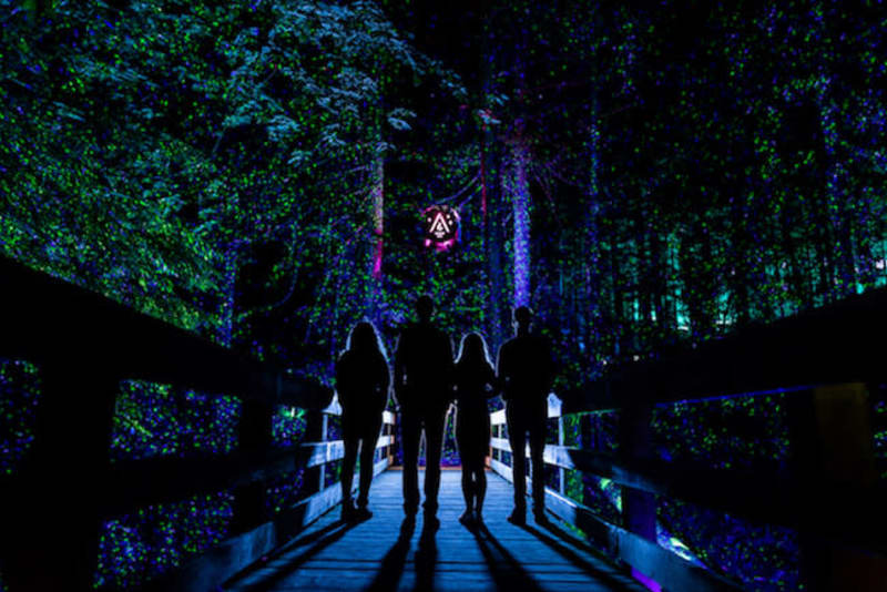 b208781328 Whistler s First Ever Multimedia Nightwalk Opens at Cougar Mountain