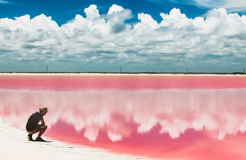 the science behind bermuda s pink sand beaches viva lifestyle travel