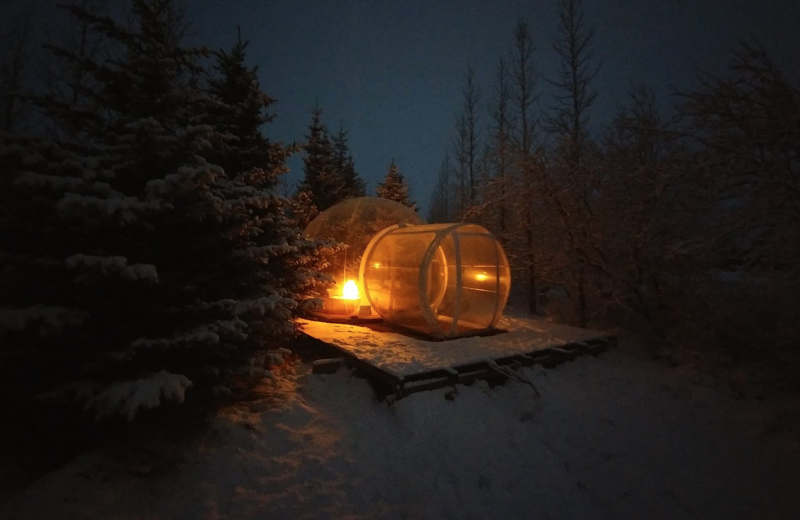 Iceland's Buubble Hotel Lets You Sleep Outdoors | VIVA Lifestyle