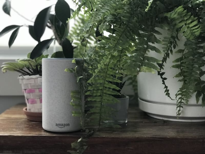 ec63291627 Top 10 Questions To Ask Alexa On World Music Day